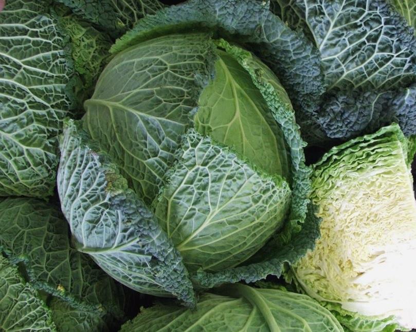 Kalória Peking káposzta és táplálkozási tulajdonságok - Édesség