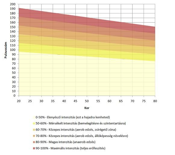 eca zsírégető eredmények
