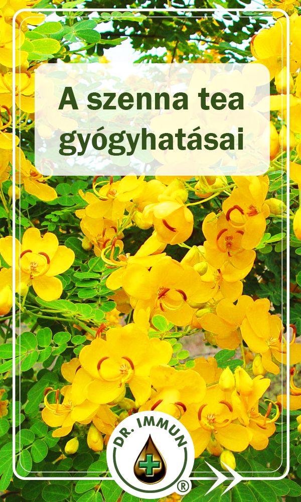 sárga tea fogyás)