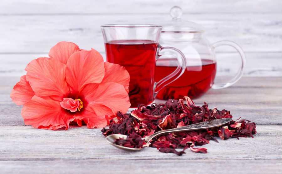 a hibiszkusz teával lefogyhat