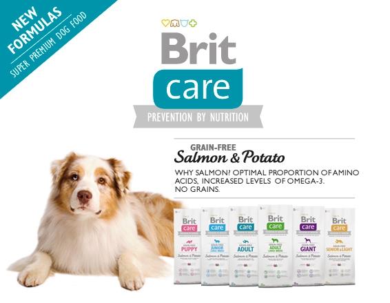brit care fogyás allegro