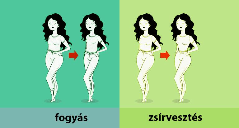 Elveszíti az összes zsírt a testben. Így zajlik valójában a zsírégetés!