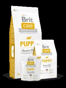 brit care fogyás 12 kg