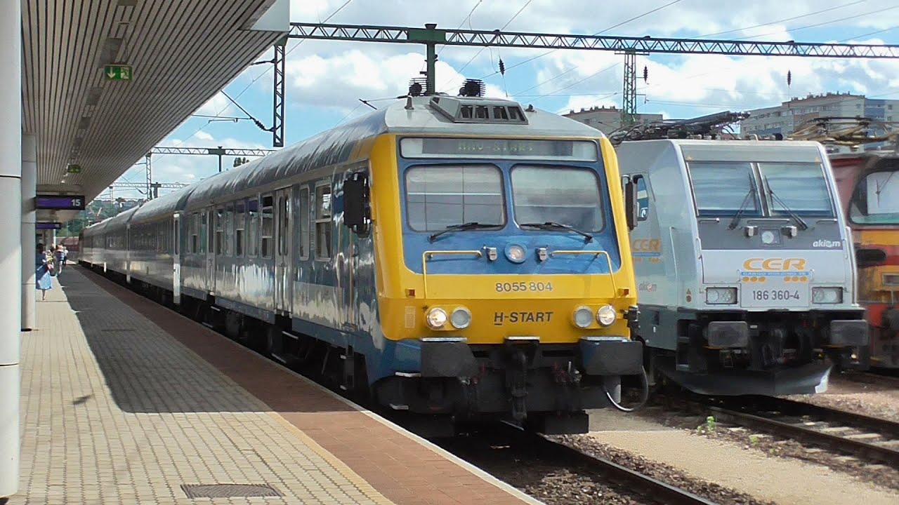 vonat anyagcsere zsírégetést