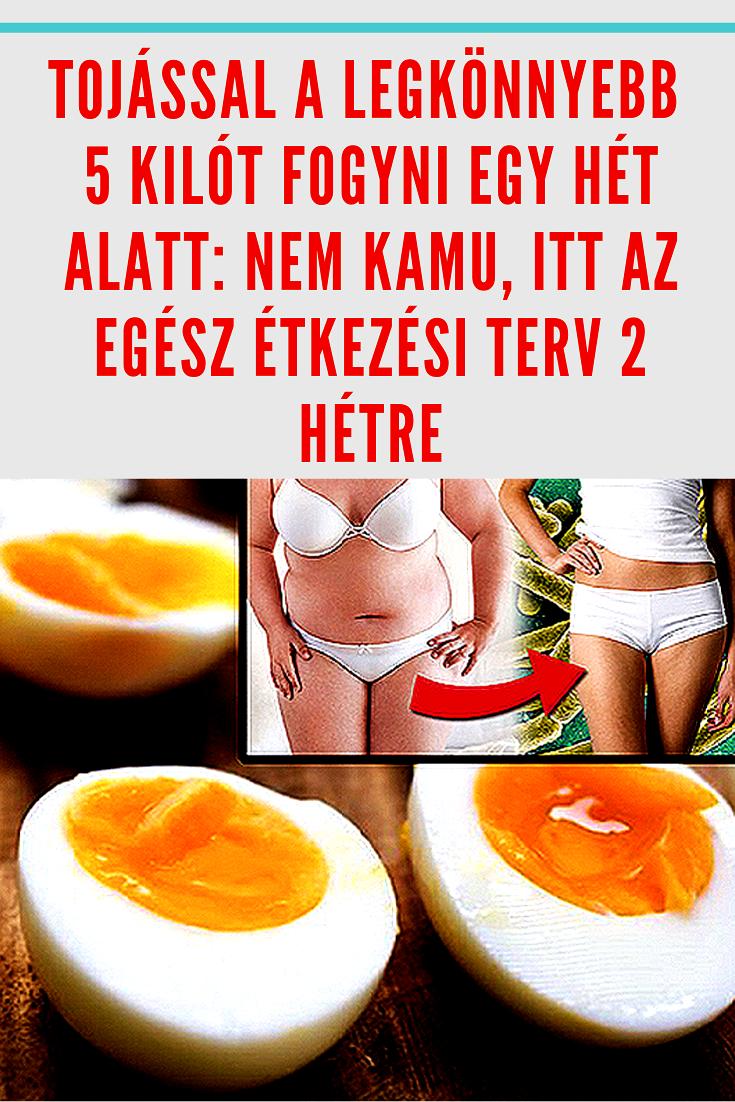fogyás napi két étkezés)