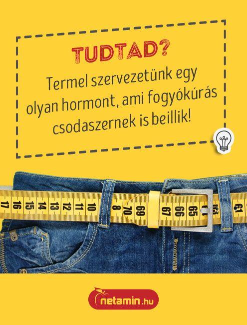 Zsírégetés: Tévhitek, tippek és trükkök - Magazin - VitalAbo Online Shop Magyar