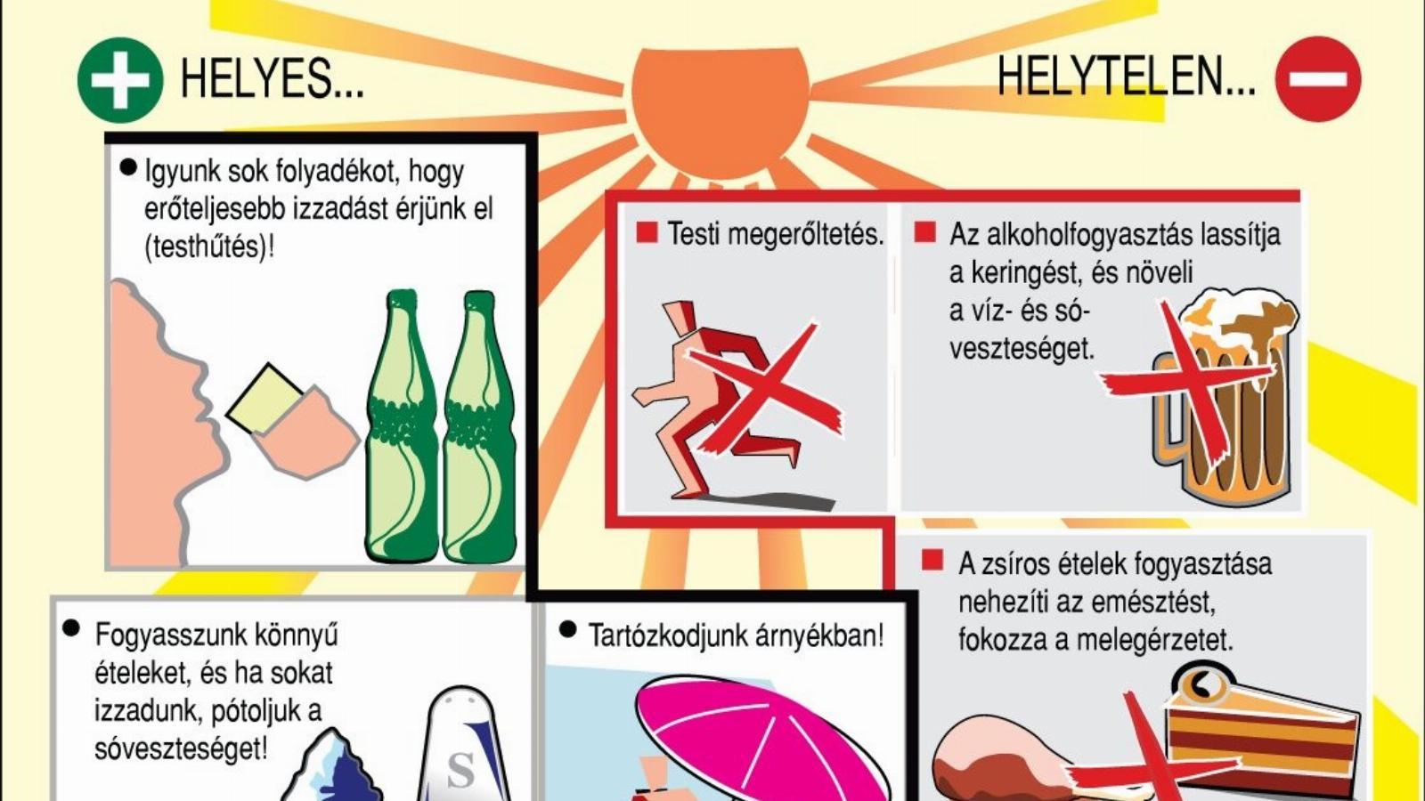 Veszteség zsíros italok Ezzel a módszerrel leolvad rólad a makacs, hasi zsír!