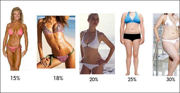 fogyni testzsír maradjon azonos súlyú