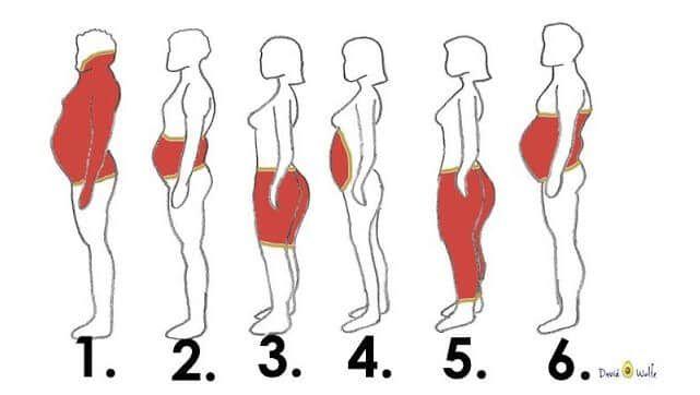 zsírégetés 1 nap