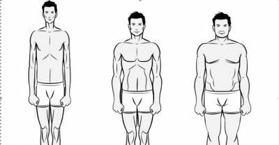 Négy testtípus fogyás, Megoldáskapu