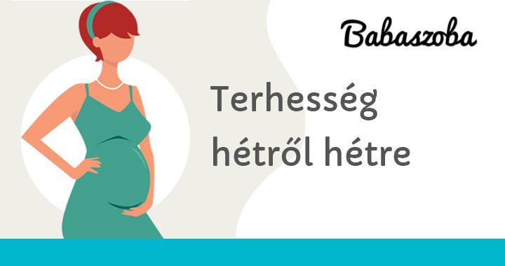 35 hetes terhes fogyni)