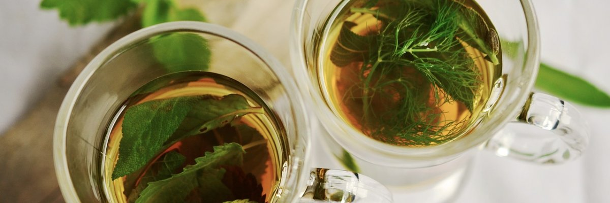 remek gyógynövények a fogyáshoz)