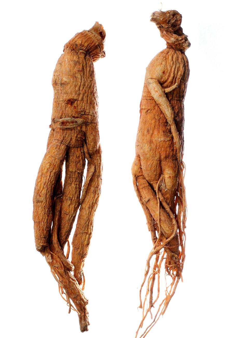 a legjobb gyógynövények a fogyáshoz sepai v6.3 karcsúsító test