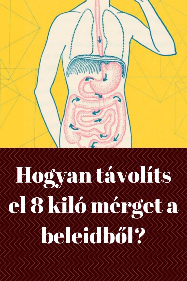 testpakolás zsírégetéshez a fogyás legjobb módja 42 évesen