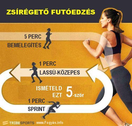 24 zsírégető test en fit
