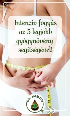 fogyni gyors gyógynövények)