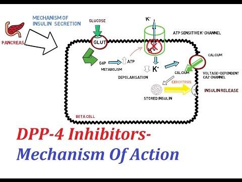 Dpp- 4 inhibitorok és fogyás - appartmanhaus.hu