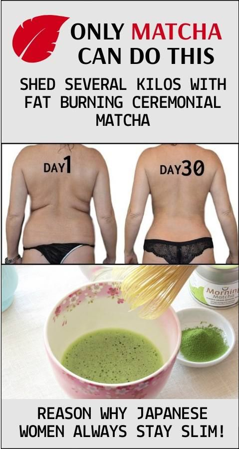 lefogy matcha tea