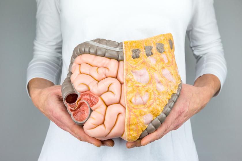 A testzsír elvesztésének egyszerű módjai. Fogyni egészséges módon tippeket