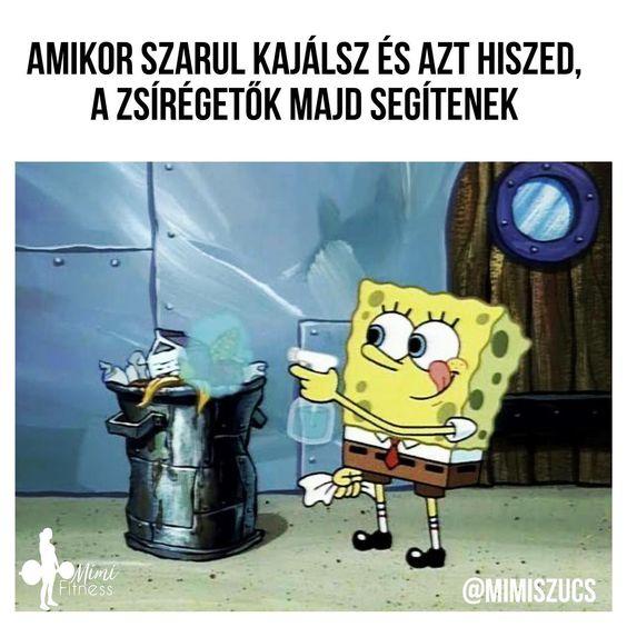 zsíréget mikor)