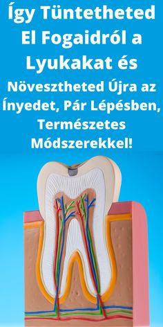 tiroxin zsírvesztés ellen)