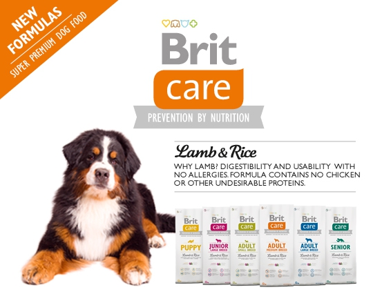 brit care fogyás 12 kg)