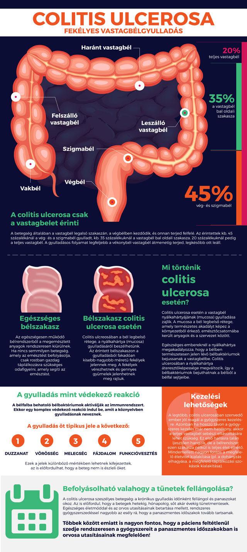 makro százalékok a zsírvesztés hím esetében hogyan lehet fogyni fáradtság nélkül