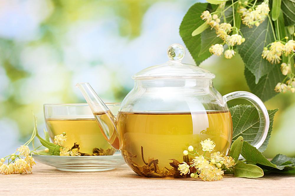 a legjobb gyógynövények a fogyáshoz zsírvesztés óriás készlet