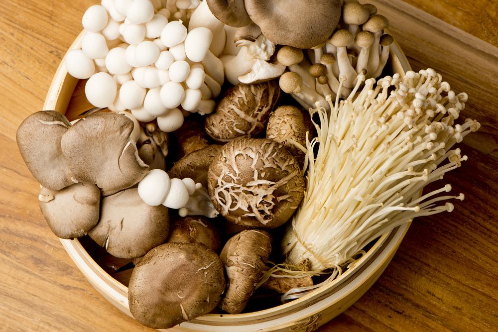 Shiitake gomba kalória – Lehet fogyni shiitake gombával?