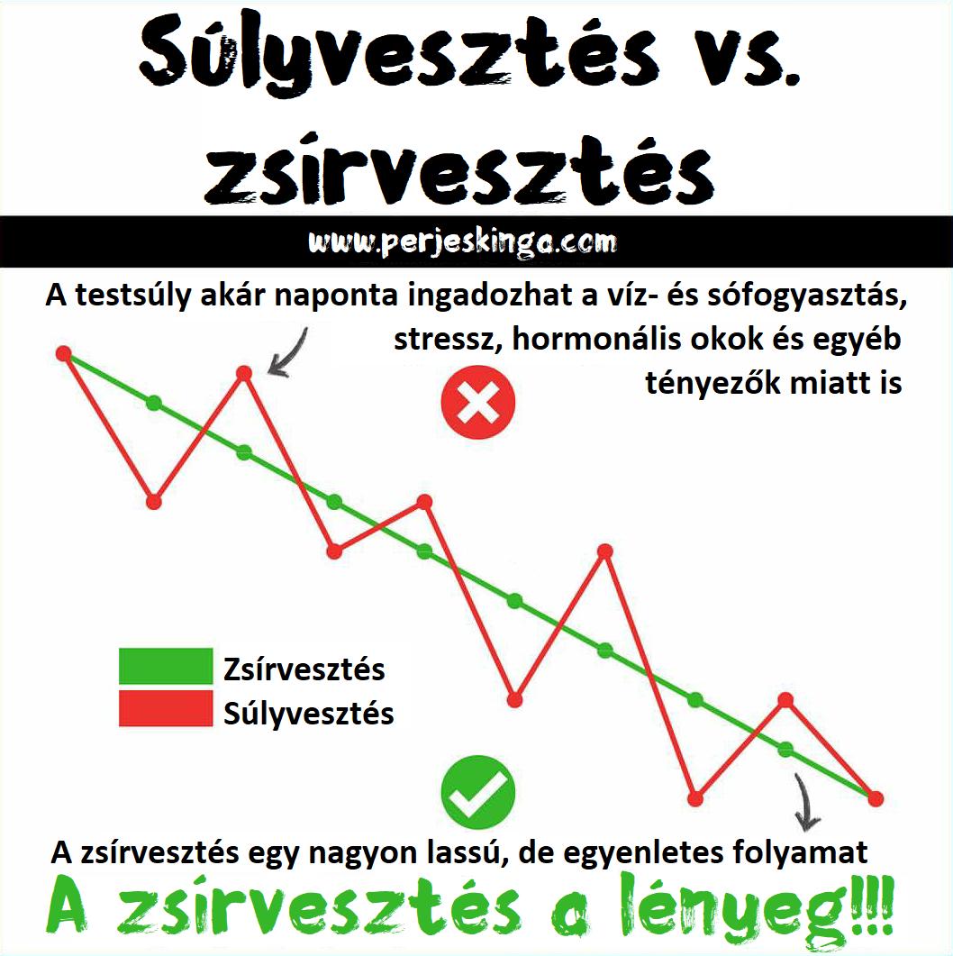vs zsírvesztés)