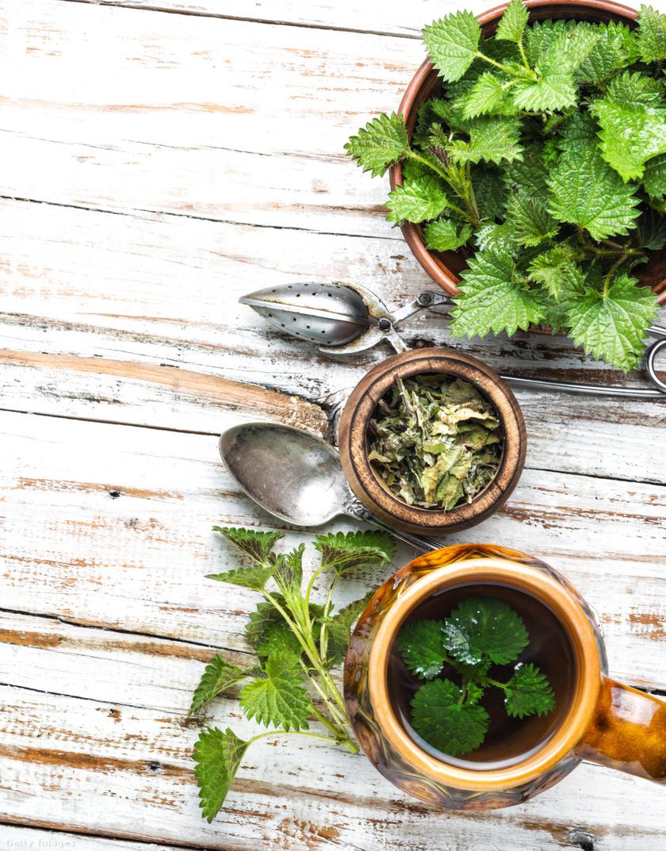 gyógynövény, amely segít a fogyásban gyorsan