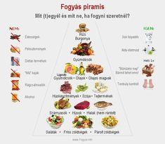 kiegyensúlyozott étkezés a fogyás elősegítésére