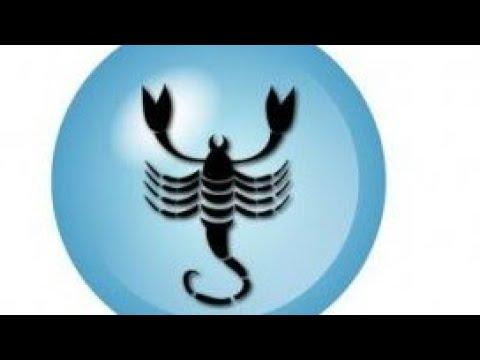 skorpió fogyni