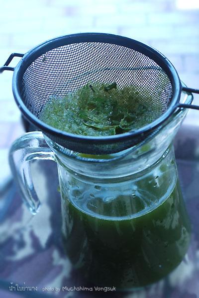 tata cara minum test karcsú gyógynövény