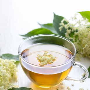 természetes gyógynövények segítenek a fogyásban)