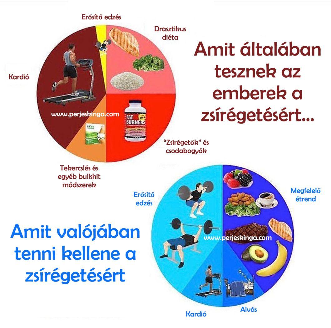 zsírvesztés sportolók)