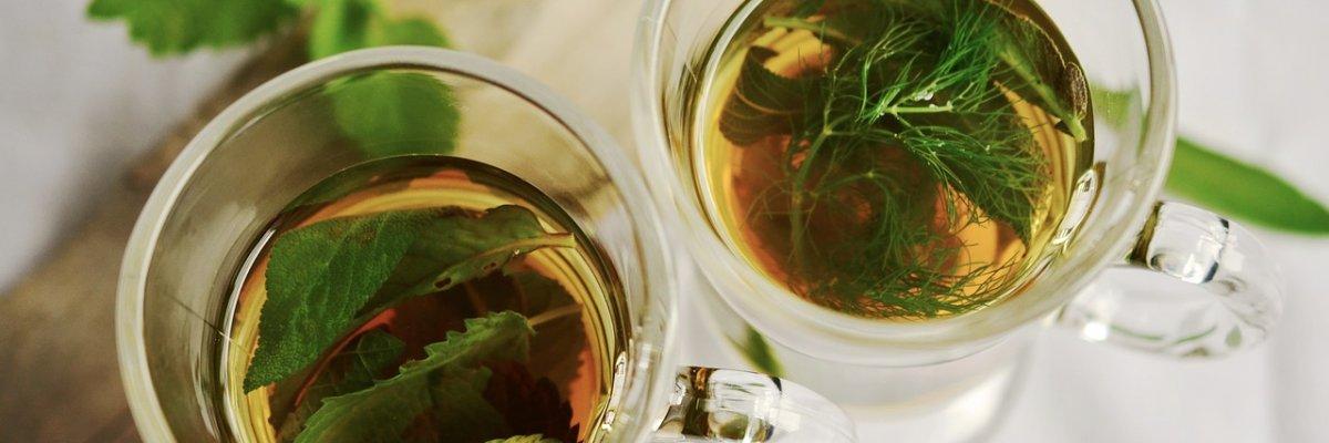 Az 5 legjobb gyógynövény, ha fogyni akarsz | appartmanhaus.hu