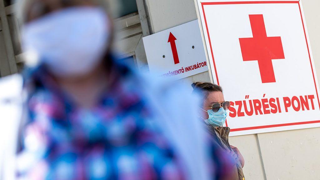 egészségügyi gazdaságok fogyni